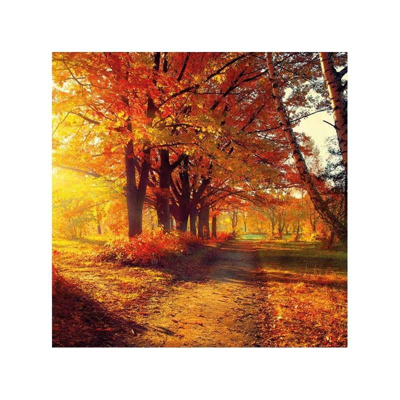 Papírové ubrousky podzimní park balení 20ks